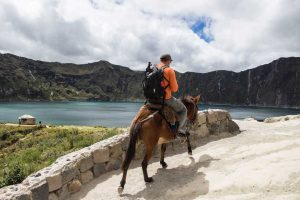 travel with horse